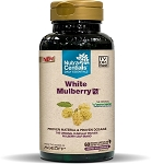 White Mulberry Nx with IMINOSOL®, 60 Veggie Caps